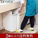 KEYUCA(ケユカ) 送料無料 arrots ダストボック...