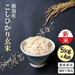 玄米5×4袋
