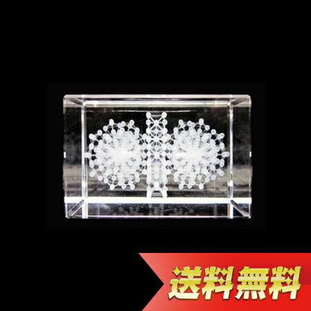 3Dカバラ連結型・ルーカス【送料無料】