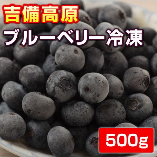 フルーツ・果物, ブルーベリー  500g