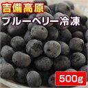 吉備高原ブルーベリー 500g  【冷凍】【他の商品と同梱不可】