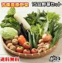 【翌日発送できます!】■送料無料■【吉備高原農家の野菜】大盛