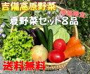 夏限定!!■送料無料■【吉備高原農家の夏野菜】夏野菜お試し野菜……