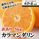 【訳あり】希望の島 カラマンダリン 5kg サイズ込 愛媛 中島産完熟春みかん