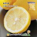 希望の島 国産レモン 500g 残留農薬ゼロ 冷凍レモン【ス