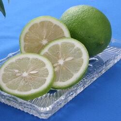 グリーンレモン3