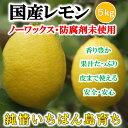 【あす楽】国産レモン 5kg 残留農薬ゼロ 訳あり レモン 【希望の島 レモン 国産 訳あり】愛媛・中島産
