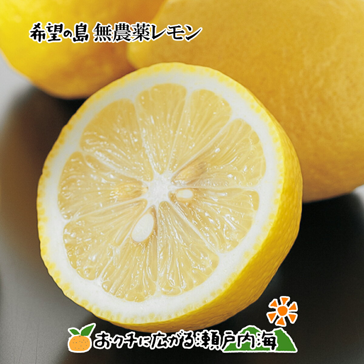 希望の島 無農薬レモン 5kg サイズ込 愛媛 中島産ユーレカレモン 国産レモン 無農薬