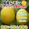 【即発送】国産レモン 残留農薬ゼロ 家庭用 レモン 3kg【希望の島 レモン 国産】愛媛・中島産