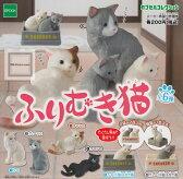 【コンプリート】カプセルコレクション ふりむき猫 ★全6種セット