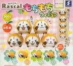 【コンプリート】puchi Rascal あらいぐまラスカル もちもちフィギュア ★全5種セット