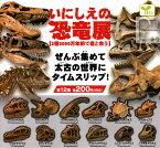 【コンプリート】いにしえの恐竜展 2億3000万年前で君と会う ★全12種セット
