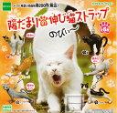 ガチャガチャ ガシャポン【単品】陽だまりの伸び猫ストラップ