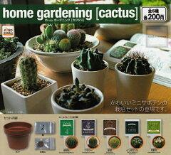 【コンプリート】home gardening [cactus] ホームガーデニング カクタス …