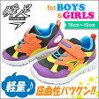 瞬足 男の子 キッズ スニーカー SJC3170 俊足 子供 靴 運動靴 通学靴 シュンソク (syunsoku) 子供靴