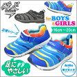 瞬足 男の子 そくいく キッズ スニーカー SKF2150 俊足 子供 靴 運動靴 通学靴 シュンソク (syunsoku) 子供靴