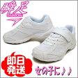 瞬足 レモンパイ 女の子 キッズ スニーカー LEJ2870 ホワイト (白) 俊足 子供 靴 運動靴 通学靴 上履き 上靴 シュンソク (syunsoku) 子供靴