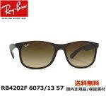 [Ray-Ban レイバン] RB4202F 6073/13 57 [サングラス]