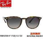 [Ray-Ban レイバン] RB4259-F 710/11 53