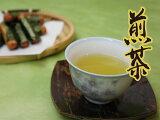 日本茶 煎茶 お茶 菊之園【 喜撰(松) 】500g袋入