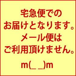 【季節限定】桜のお菓子「桜せんべい」さくら葉入りお茶の友お菓子お茶請け季節手土産【RCP】