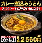 【送料無料】スパイシー&ちょいピリ辛が刺激的で旨い!カレー煮込みうどん8食セット