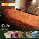 Tulip220s