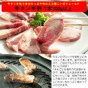 牛タン入り 焼肉セット 牛タン半割300g以上・ジンギスカン150g・チキン塩ネック100g・味付け豚タン100g・特上味噌ホルモン200g・白菜キムチ150g 3