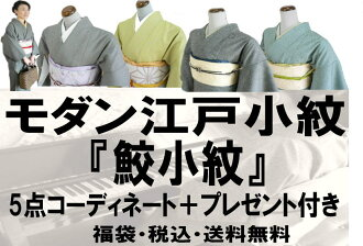 "Edo Komon set bags kimono and Obi ""belt with' + silk sash + silk Obi lift + Edo Komon Edo Komon tailoring up bipartite expression juban + leave it presents one point 12600 Yen sale washable representative pattern""shark Komon' is a whopping giveaway with"