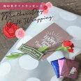 母の日プレゼントカーネーションラッピング「カーネーション(造花)+母の日カードラッピングセット」母の日ギフトギフトラッピングプレゼント包装造花メッセージカードおしゃれかわいい母の日ギフトMother'sDay【メール便不可】