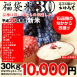 【新米!】【福袋30】玄米のまま30kgもしくは精米済み白米27kg【平成29年・滋賀県産】【送料無料】1袋でのお届けとなります!