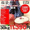 【福袋米】 白米 30kg(10kg×3袋)【平成29年産:滋賀県産】【送料無料】(ゆうパックに限る)