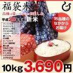 【新米!】【福袋米】 白米 10kg【平成29年・滋賀県産】10kg×1袋でのお届けです♪】【送料無料】