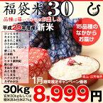 【1月の特別米】【福袋30】玄米のまま30kgもしくは精米済み白米27kg【平成29年・滋賀県産】【送料無料】1袋でのお届けとなります!