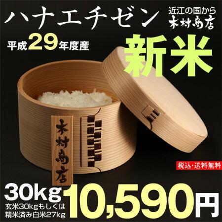【新米!】ハナエチゼン玄米のまま30kgもしくは精米済み白米27kg【平成29年・滋賀県産】