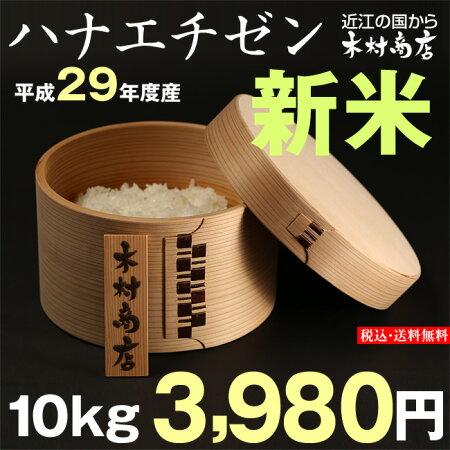 【新米!】ハナエチゼン10kg【平成29年・滋賀県産】