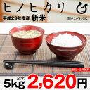 【新米】ヒノヒカリ 環境こだわり米 玄米 5kg【平成29年:滋賀県産】【送料無料】