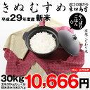 【新米!】きぬむすめ 環境こだわり米 玄米のまま30kgもしくは精米済み白米27kg【平成29年・滋賀県産】