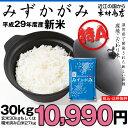みずかがみ 環境こだわり米 玄米 30kgもしくは精米済み白米27kg 送料無料【平成29年・滋賀県産】(ゆうパックに限る)