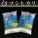 【送料無料】【新米:バーゲン市場】コシヒカリ 10kg【平成27年:滋賀県産】