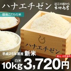 【送料無料】 【新米出荷開始:特別セール】ハナエチゼン 白米10kg(5kg×2袋)【平成25年・...