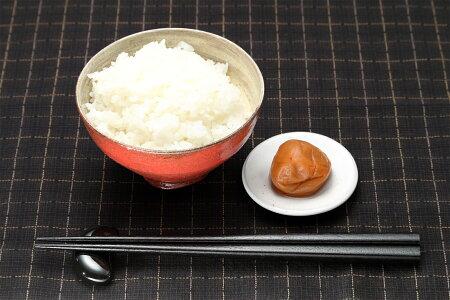 【新米!】【福袋米】白米10kg【平成29年・滋賀県産】10kg×1袋でのお届けです♪】【送料無料】