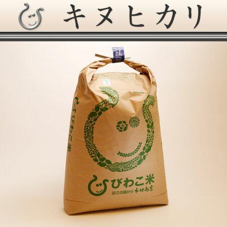 コシヒカリ環境こだわり米玄米のまま30kgもしくは精米済み白米27kg【平成28年・滋賀県産】【送料無料】