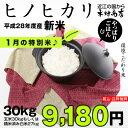 【1月の特別米♪】ヒノヒカリ 玄米のまま30kgもしくは精米済み白米27kg【平成28年:滋賀県産】【送料無料】