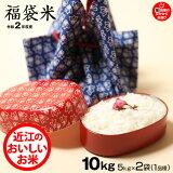 【新米】【福袋米 スペシャルパック】 白米5kg×2袋 【令和2年:滋賀県産】 【送料無料】2品種でのお届けとなります