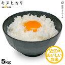 【新米】キヌヒカリ 環境こだわり米 5kg 【令和2年:滋賀...