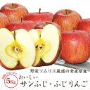 【送料無料】野菜ソムリエ厳選の青森県産のおいしいサンふじ・ふ