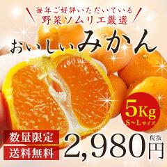 毎年好評のみかんが販売開始です!酸味と甘みのバランスが絶妙です。【送料無料】【5kg箱】静岡...