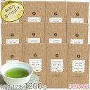 茶和家 自家製 掛川一番茶 100g12本(470/100g