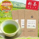 茶和家 カテキンまるごと深蒸し掛川茶300g 送料無料